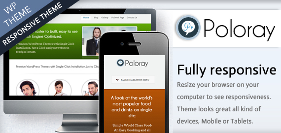 POLORAY - WORDPRESS THEME