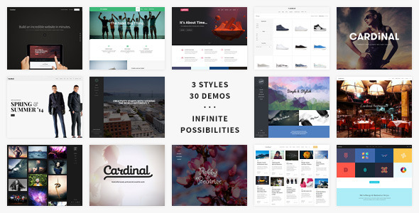 Cardinal - WordPress Theme 1