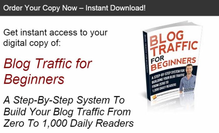 Order digital copy of Blog Traffic for Beginners